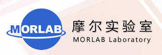 MORLAB Group